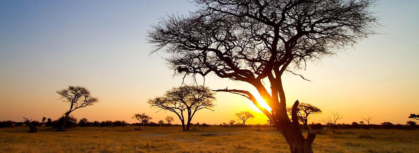 Zimbabwe landscape at dusk